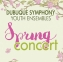Spring Youth Concert thumbnail